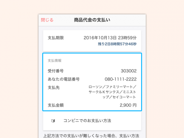 payment_cvs_1