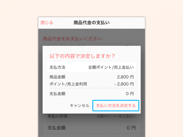 payment_point_5